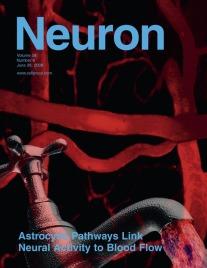 Neuron Cover